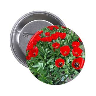 Flowerbed with red tulips button