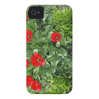 Flowerbed with red tulips iPhone 4 Case-Mate case