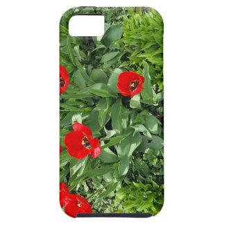 Flowerbed with red tulips iPhone SE/5/5s case