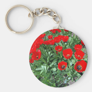 Flowerbed with red tulips basic round button keychain