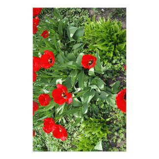 Flowerbed with red tulips stationery