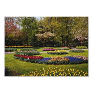 "Flowerbeds at Keukenhof, Netherlands  flowers 5"" X 7"" Invitation Card"