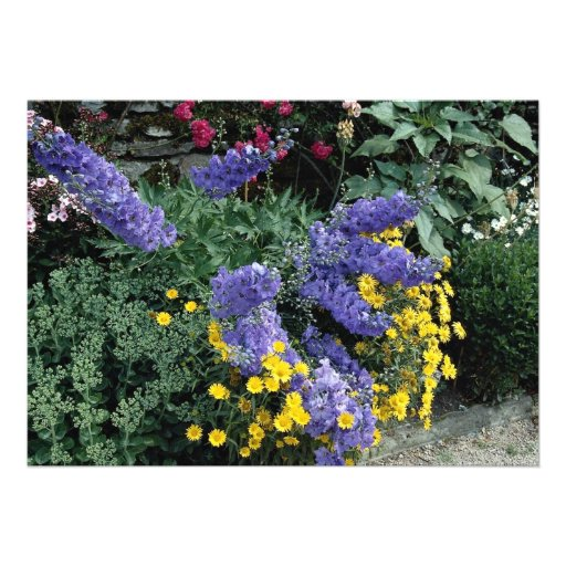 Flowerbeds on the grounds of Hadden Hall, England Custom Invitations