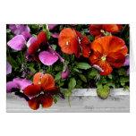 Flowerbox de pensamientos tarjeta pequeña