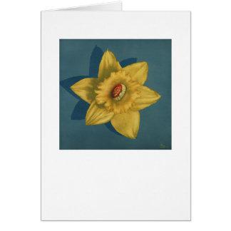 Flowerbud Card