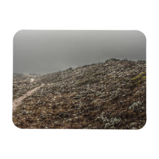 Flowered Hilltop Foggy Path Rectangular Magnet