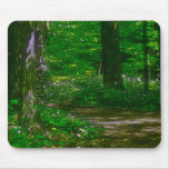 Flowered Trail Painting Mouse Pad