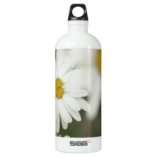 Floweres blanco