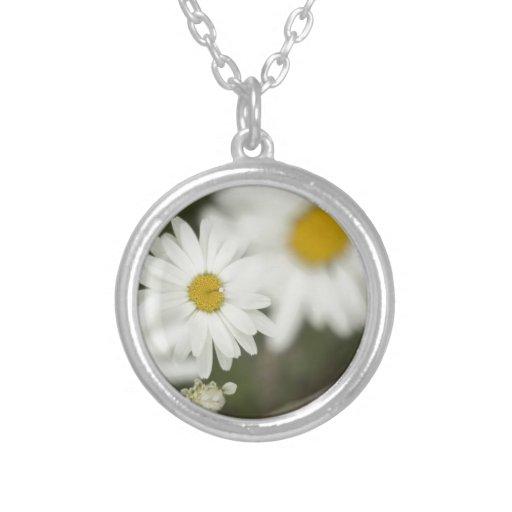 Floweres blanco grimpolas