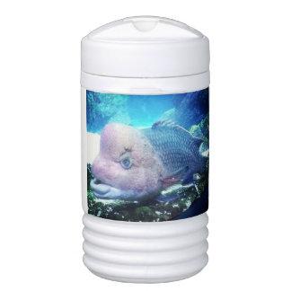 Flowerhorn Cichlid Fish Cooler