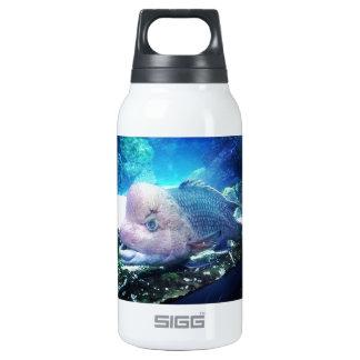Flowerhorn Cichlid Fish Insulated Water Bottle