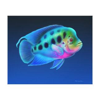 Flowerhorn Cichlid Fish Wrapped Canvas