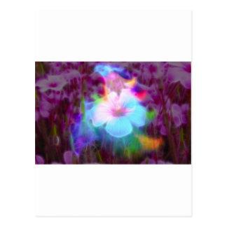 FlowerImplosion 2 Postales
