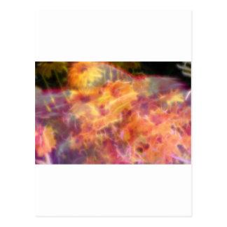 FlowerImplosion 3 Tarjetas Postales