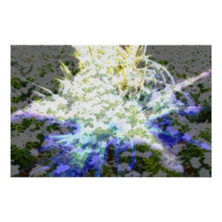 FlowerImplosion 4 Print