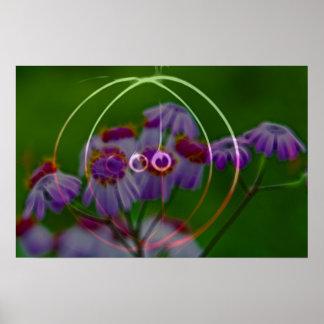 FlowerImplosion 5 Poster