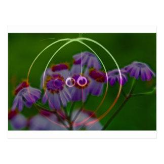 FlowerImplosion 5 Postal