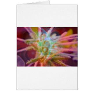 FlowerImplosion 6 Card