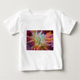 FlowerImplosion 6 Tshirts