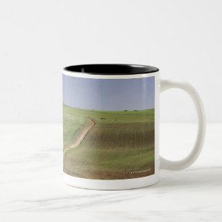 Flowering aloes near Caledon, Western Cape Two-Tone Coffee Mug