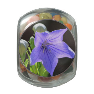 Flowering Balloon Flowers Glass Candy Jars