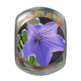 Flowering Balloon Flowers Jelly Belly Candy Jars