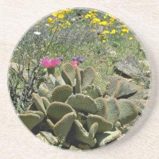 Flowering Beavertail Cactus With Wildflowers flowe Coaster