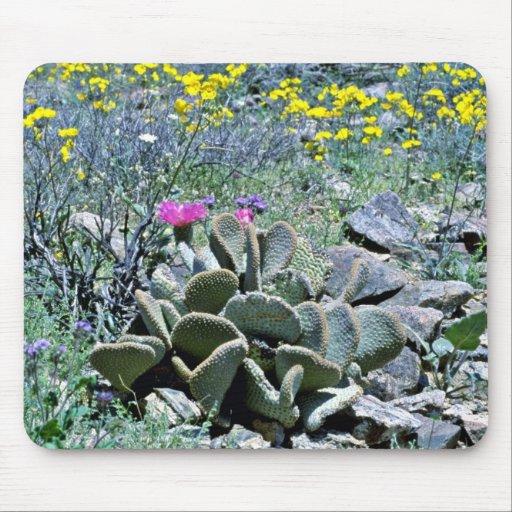 Flowering Beavertail Cactus With Wildflowers Mousepad