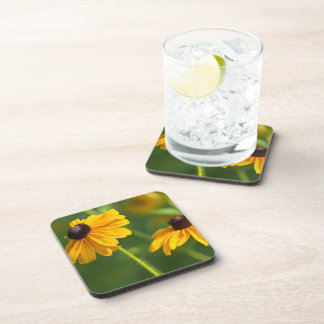Flowering Black Eyed Susans Cork Coasters
