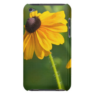 Flowering Black Eyed Susans iTouch Case iPod Case-Mate Case