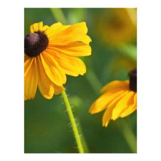Flowering Black Eyed Susans Sheet Customized Letterhead
