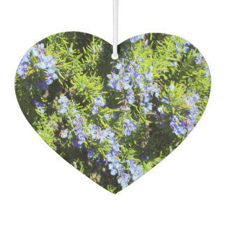 flowering blue rosemary air freshener