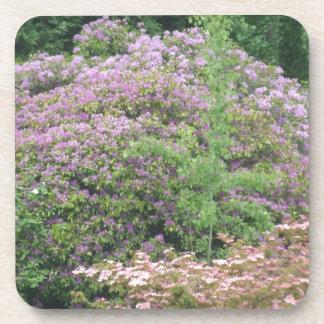 Flowering Bush Coaster