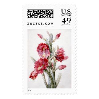 Flowering Cactus 1831 - Postage