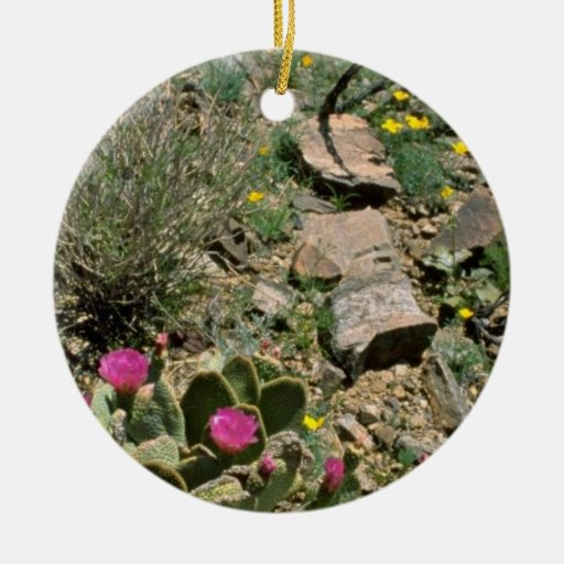 Flowering Cactus And Yellow Poppies flowers Double-Sided Ceramic Round Christmas Ornament