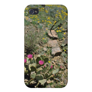 Flowering Cactus And Yellow Poppies flowers iPhone 4/4S Case