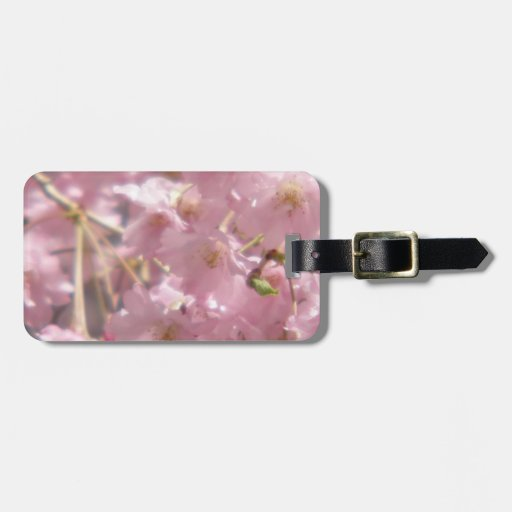 Flowering Cherry Tree Luggage Tag