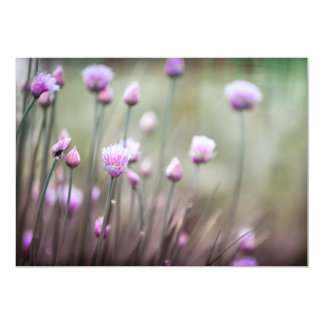 Flowering chives II Card