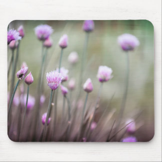 Flowering chives II Mouse Pad