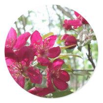 Flowering Crab Apple Tree Sticker