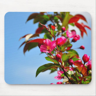 Flowering Crabapple Mouse Pad