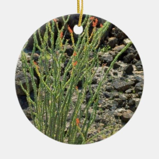 Flowering Desert Plant flowers Christmas Ornaments