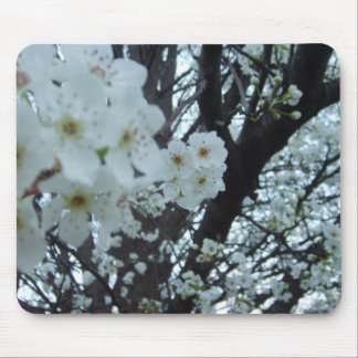 Flowering dogwood mousepad