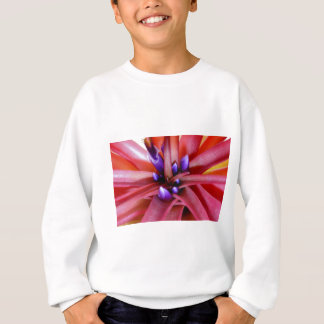 Flowering in Epiphyte in pink and purple Sweatshirt