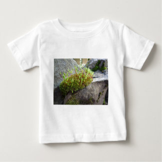 Flowering moss at The Cleeve in Exmoor Baby T-Shirt