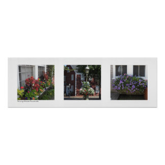 Flowering Nantucket, Massachusetts Triptych Poster