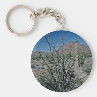 Flowering Ocotillo, Butte Behind flowers Keychains