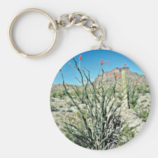 Flowering Ocotillo, Butte Behind Key Chain