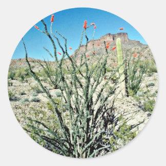 Flowering Ocotillo, Butte Behind Classic Round Sticker