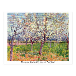 Flowering Orchard By Vincent Van Gogh Post Cards